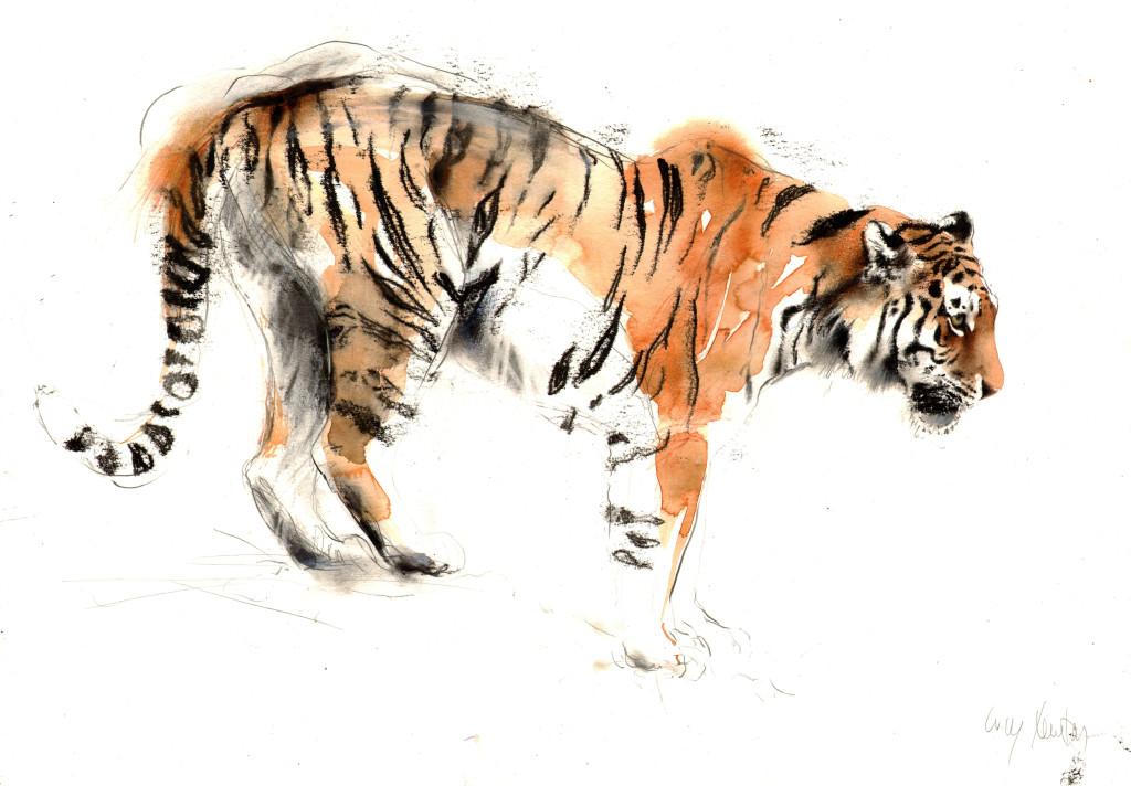 tigerHWP