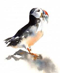 1puffinwithcatch
