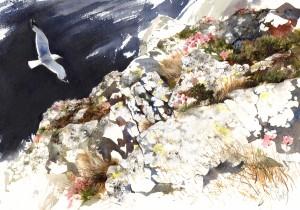 clifftopstabbshead
