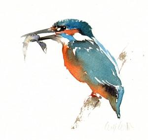 kingfisherwithcatch